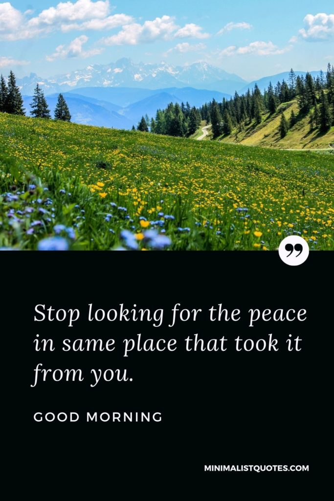 Good Morning Wish & Message With Image: Stop looking for the peace in the same place that took it from you.