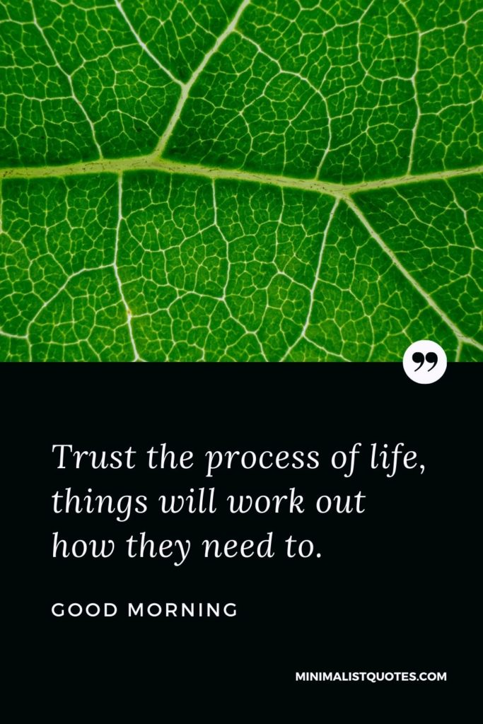 Good Morning Wish & Message With Image: Trust the process of life, things will work out how they need to.