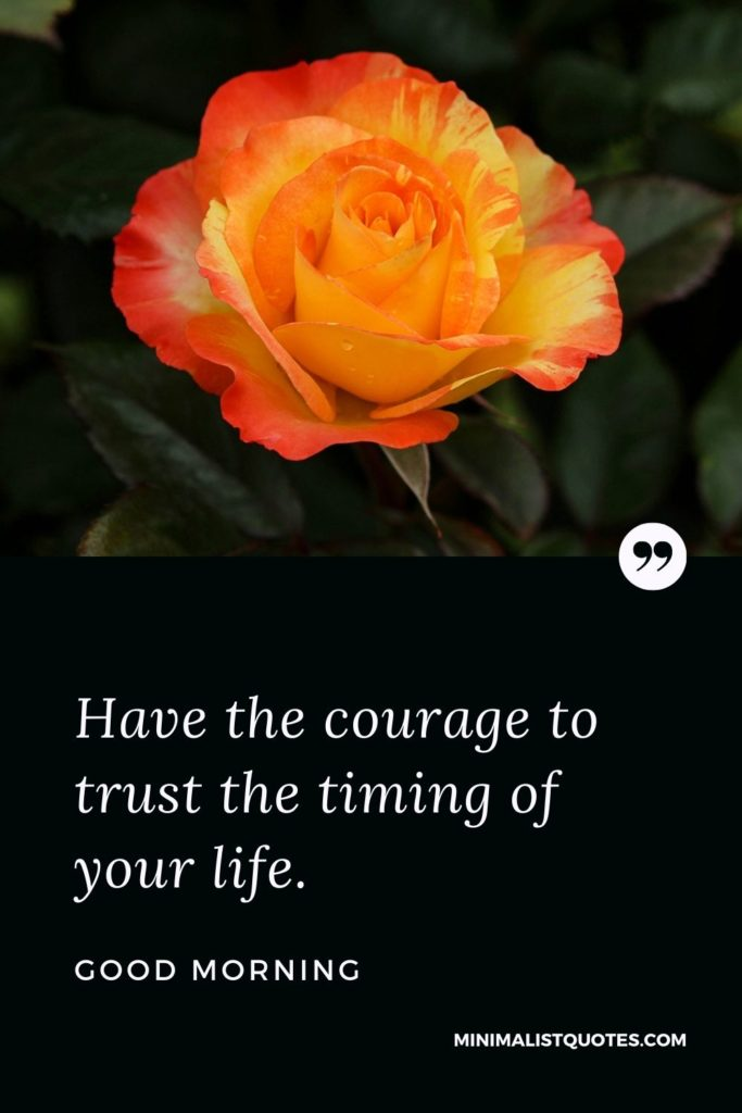 Good Morning Wish & Message With Image: Have the courage to trust the timing of your life.