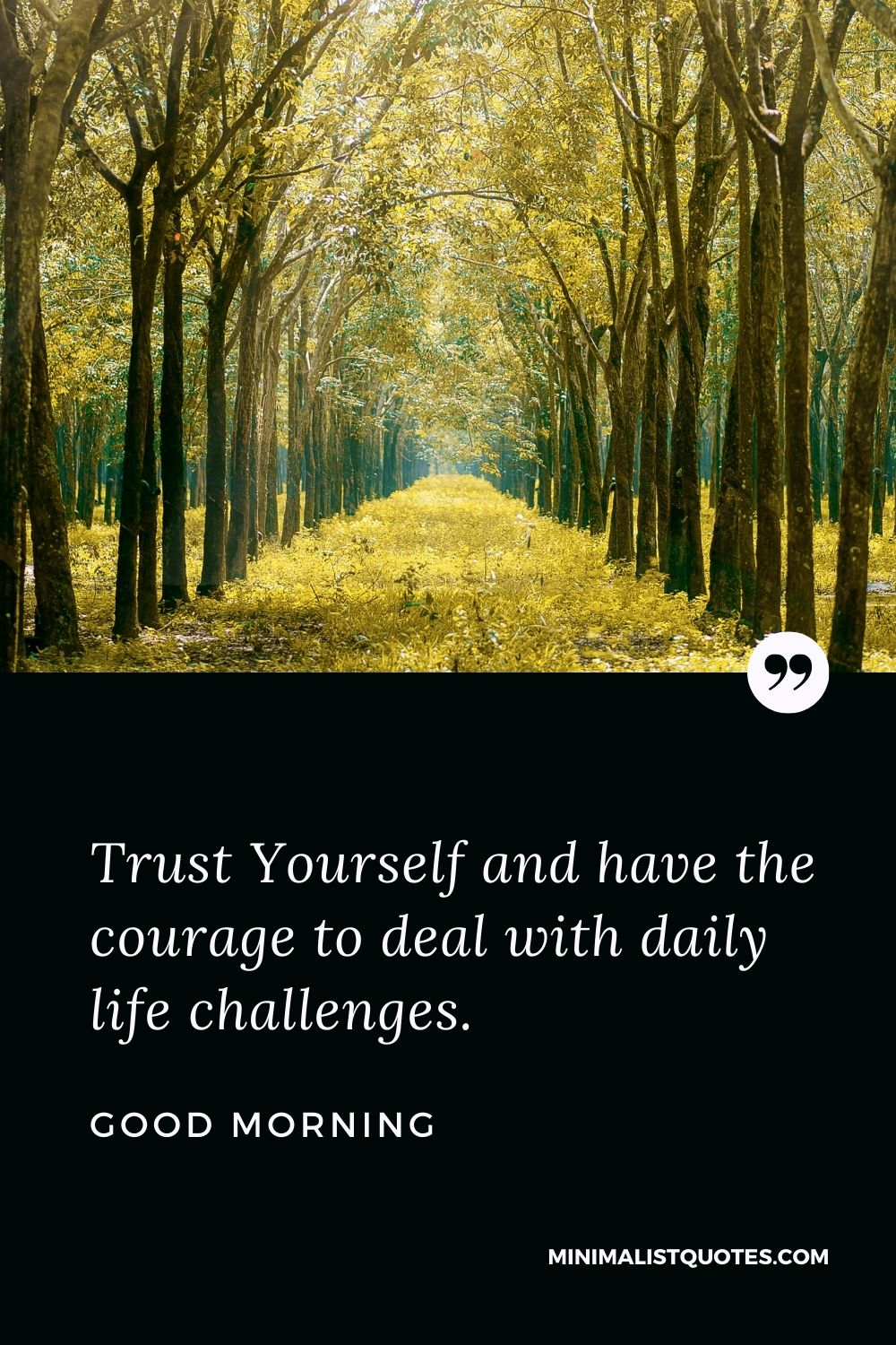Good Morning Wish & Message With Image: Trust Yourselfand have the courage to deal with daily life challenges.