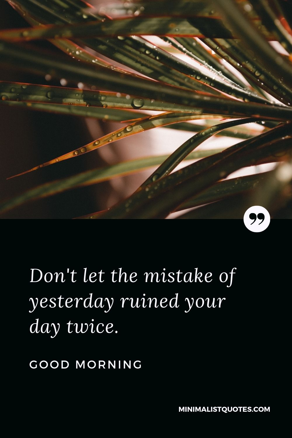 Good Morning Wish & Message With Image: Don't let the mistake of yesterday ruinedyour day twice.