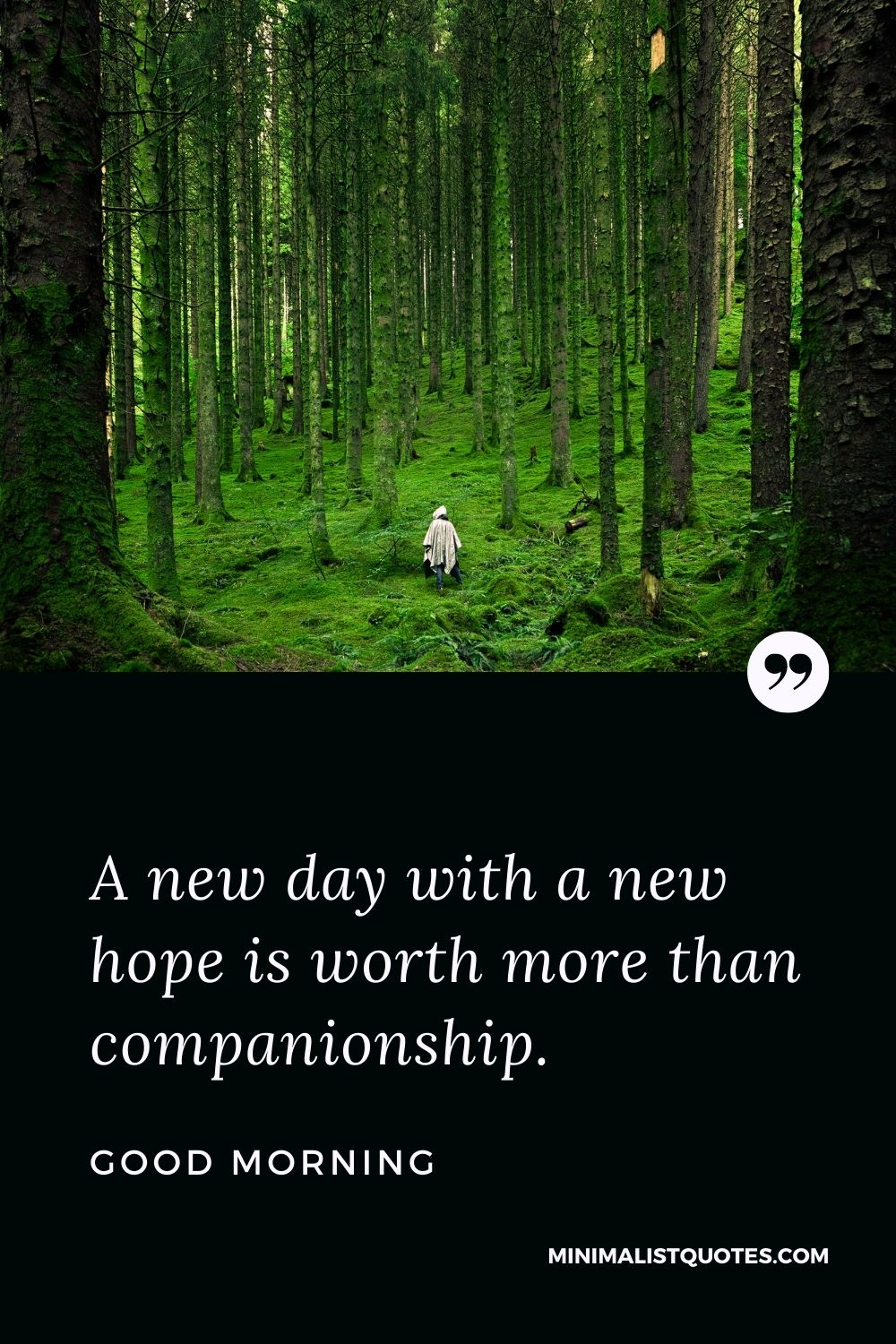 Good Morning Wish & Message With Image: A new day with a new hope is worth more than companionship.