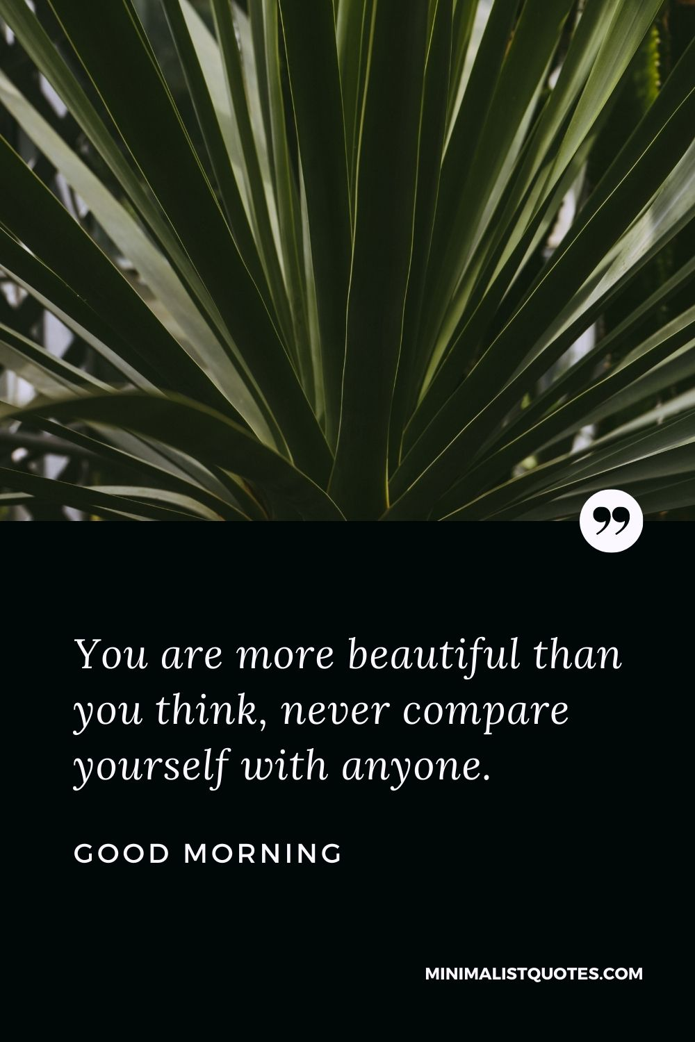Good Morning Wish & Message With Image: You are more beautiful than you think, never compare yourself with anyone.
