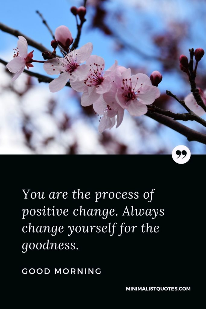 Good Morning Wish & Message With Image: You are the process of positive change. Always change yourself for the goodness.
