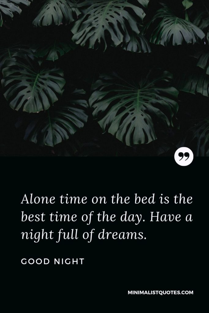 Good Night Wishes - Alone time on the bed is the best time of the day. Have a night full of dreams.