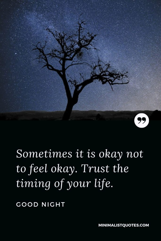 Good Night Wishes - Sometimes it is okay not to feel okay. Trust the timing of your life.