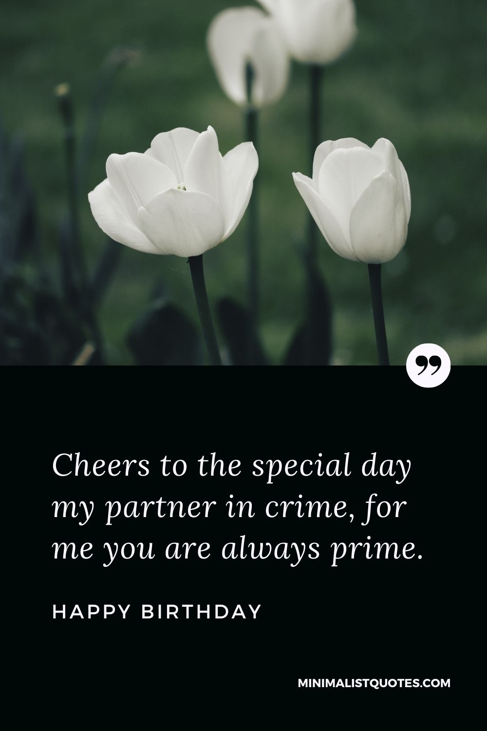 Happy Birthday Wishes - Cheers to the special day my partner in crime, for me you are always prime.