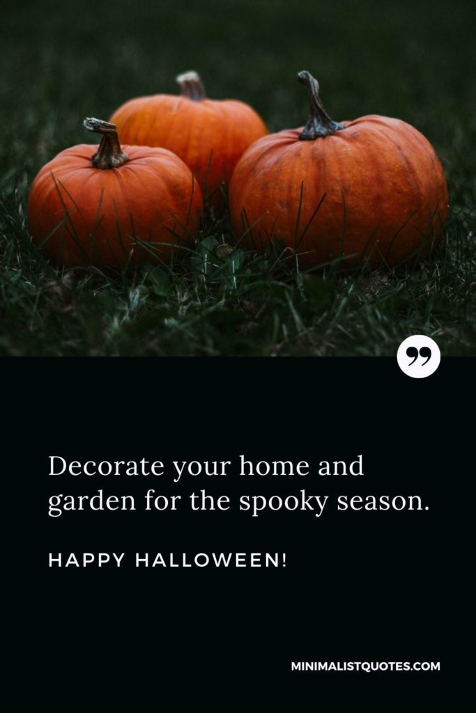 Happy Halloween - Decorate your home and garden for the spooky season.