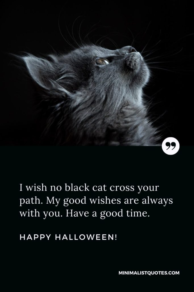 Happy Halloween Wishes - I wish no black cat cross your path. My good wishes are always with you. Have a good time.