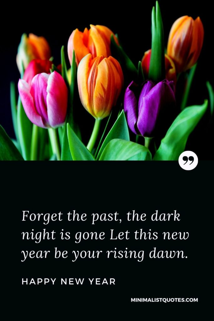 Happy New Year Wishes - Forget the past, the dark night is gone Let this new year be your rising dawn.