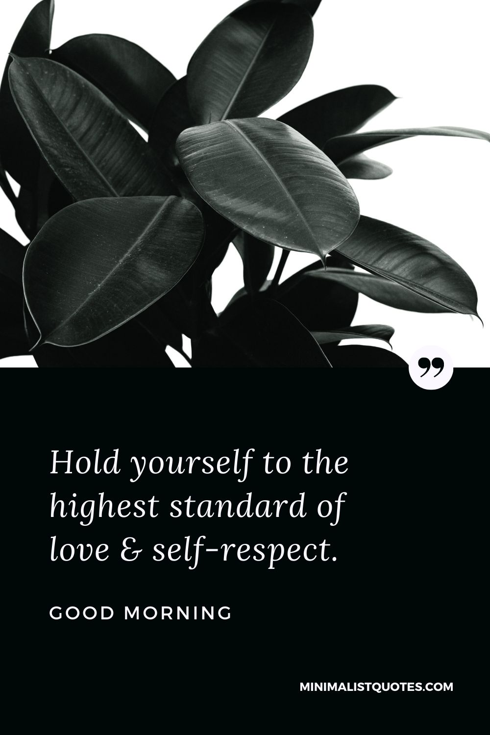 Good Morning Wish & Message With Image: Hold yourself to the highest standard of love & self-respect.