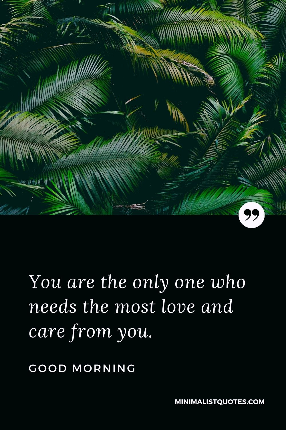 Good Morning Wish & Message With Image: You are the only one who needs the most love and care from you.