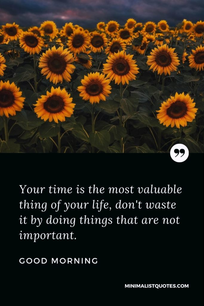 Good Morning Wish & Message With Image: Your time is the most valuable thing of your life, don't waste it by doing things that are not important.