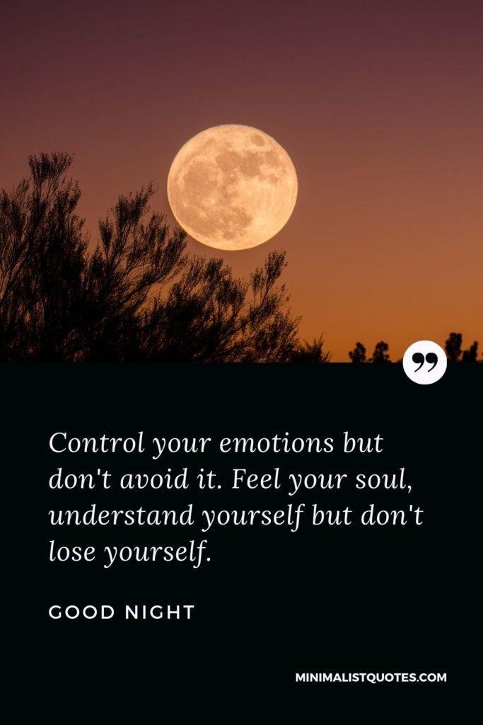 Good Night Wishes - Control your emotions but don't avoid it. Feel your soul, understand yourself but don't lose yourself.