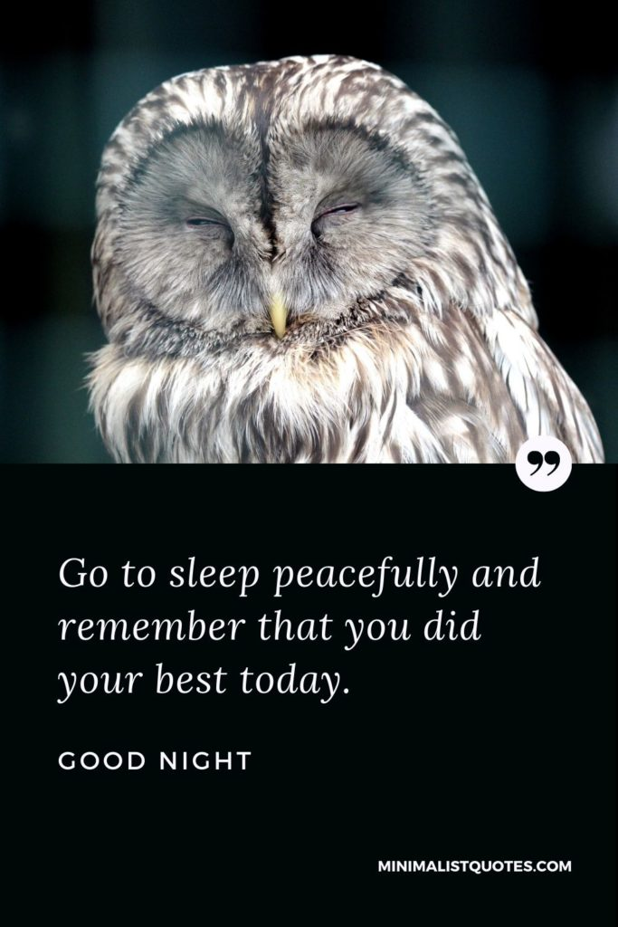 Good Night Wishes - Go to sleep peacefully and remember that you did your best today.