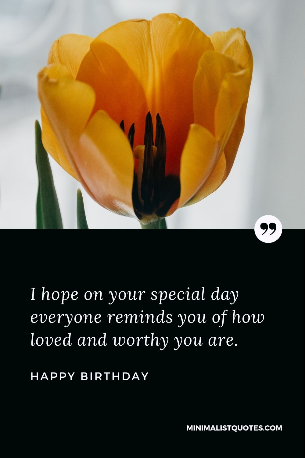 Happy Birthday Wishes - I hope on your special day everyone reminds you of how loved and worthy you are.