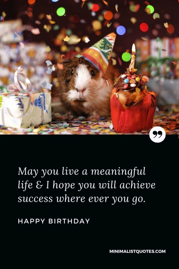 Happy Birthday Wish - May you live a meaningful life & I hope you will achieve success where ever you go.