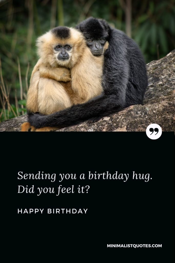 Happy Birthday Wish - Sending you a birthday hug. Did you feel it?