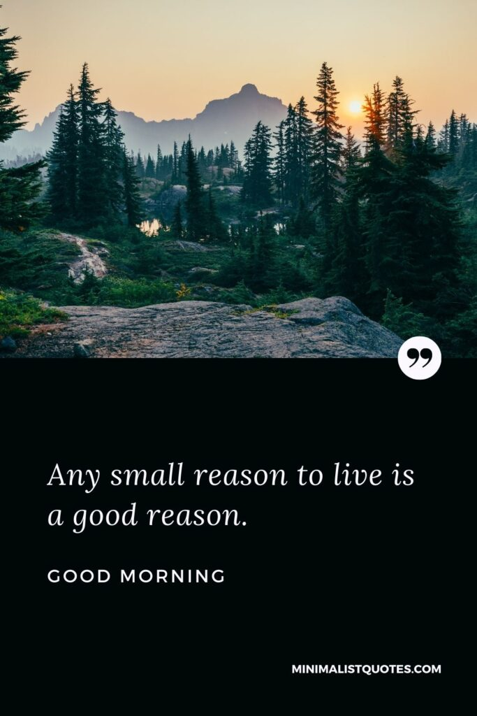 Good Morning Wish & Message With Image: Any small reason to live is a good reason.