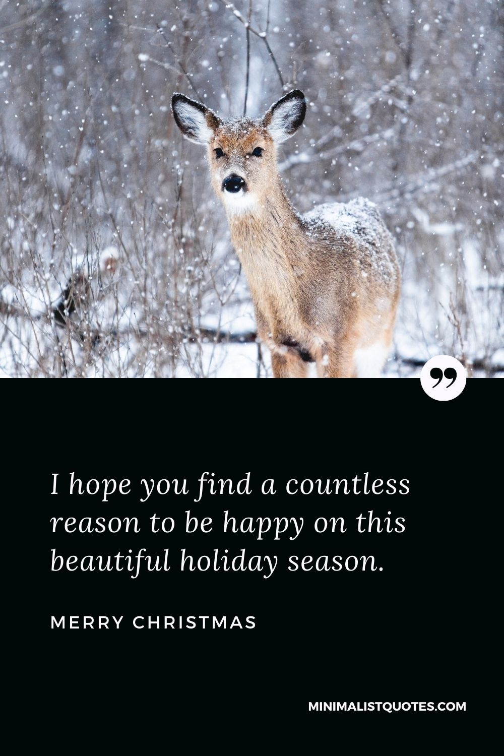 Merry Christmas Wish - I hope you find a countless reason to be happy on this beautiful holiday season.