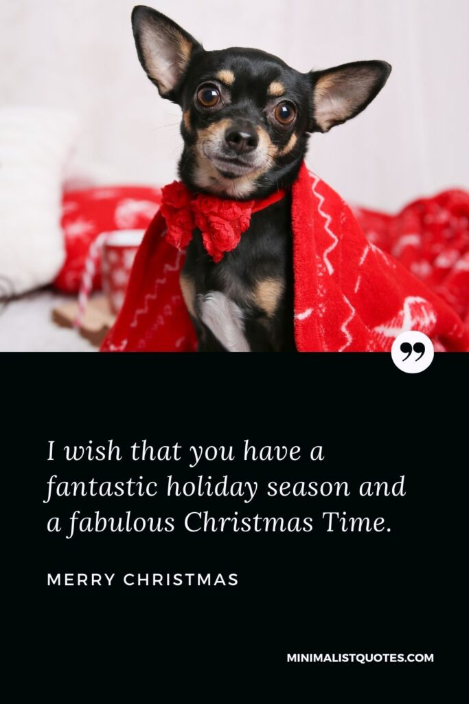 Merry Christmas Wish - I wish that you have a fantastic holiday season and a fabulous Christmas Time.