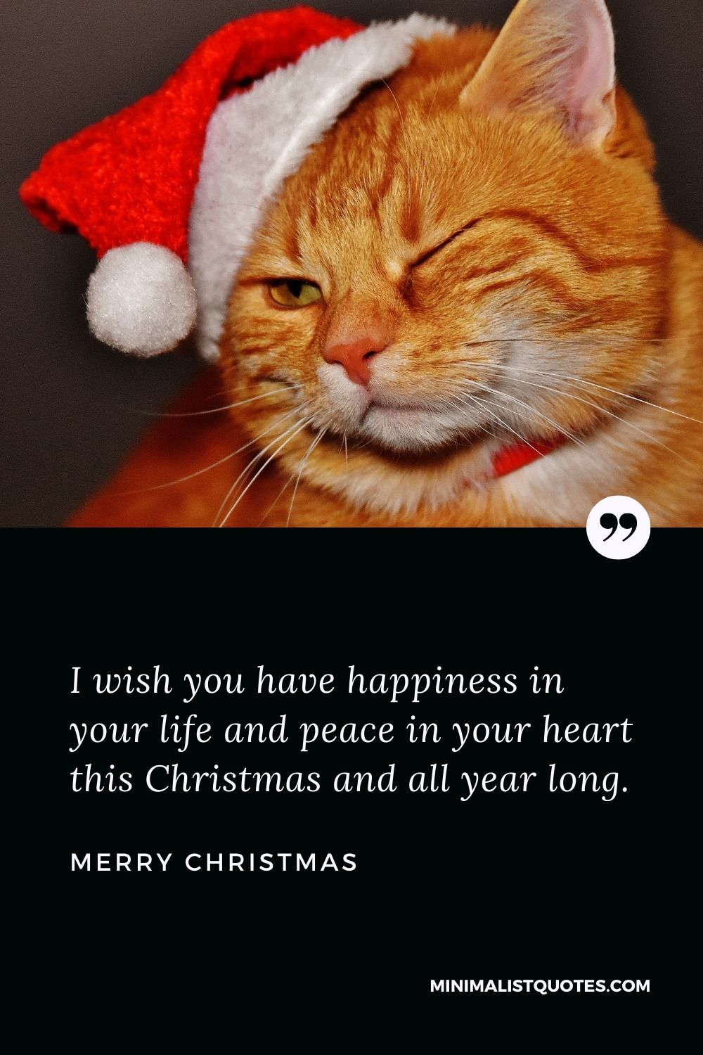 Merry Christmas Wish - I wish you have happiness in your life and peace in your heart this Christmas and all year long.