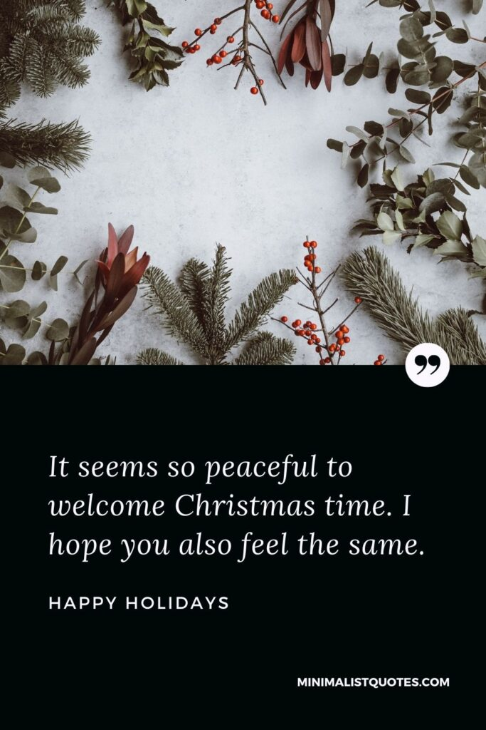Merry Christmas Wish - It seems so peaceful to welcome Christmas time. I hope you also feel the same.