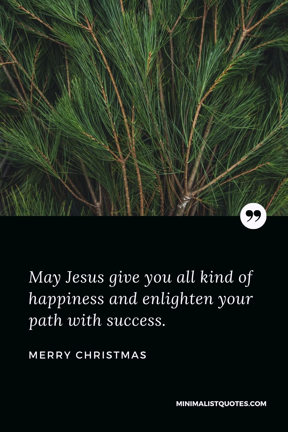 Merry Christmas Wish - May Jesus give you all kind of happiness and enlightenyour path with success.