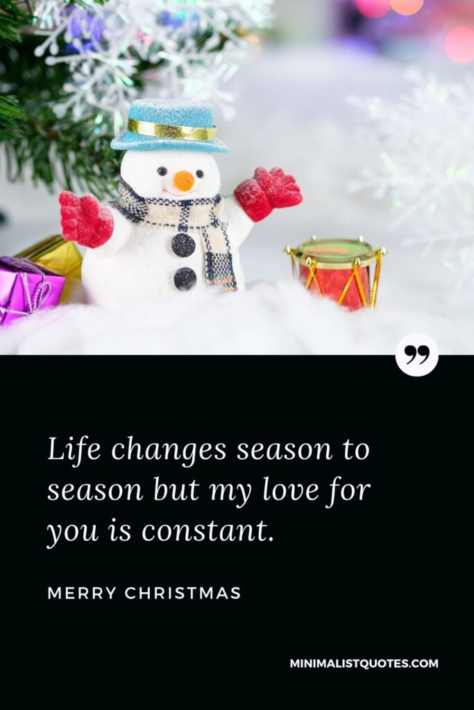 Merry Christmas Wish - Life changes season to season but my love for you is constant.