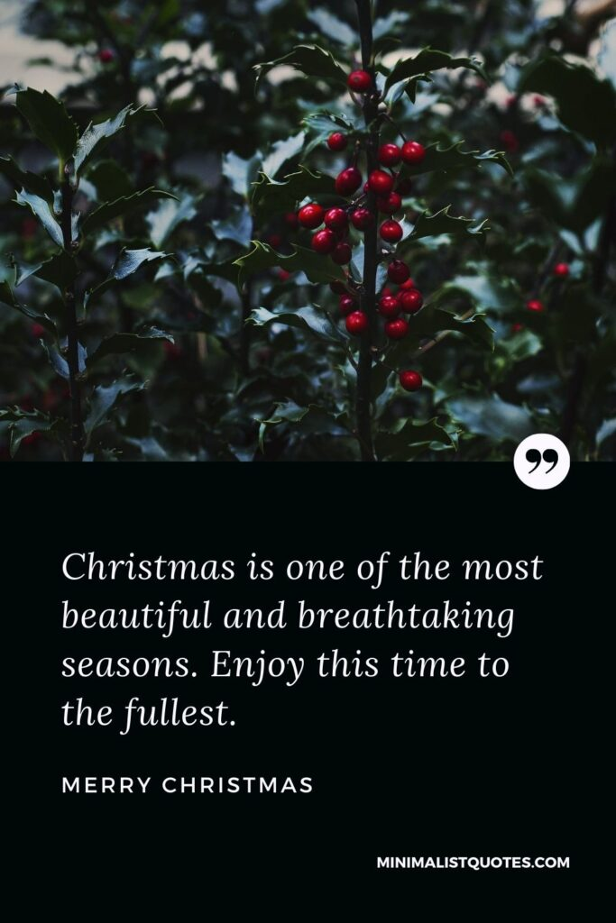 Merry Christmas - Christmas is one of the most beautiful and breathtaking seasons. Enjoy this time to the fullest.
