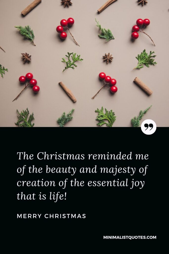 Merry Christmas Wish - The Christmas reminded me of the beauty and majesty of creation of the essential joy that is life.