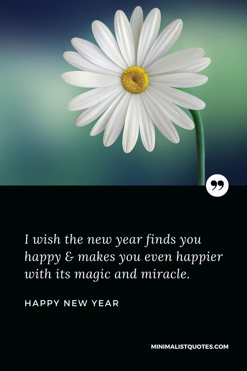 New Year Wish - I wish the new year finds you happy & makes you even happier with its magic and miracle.
