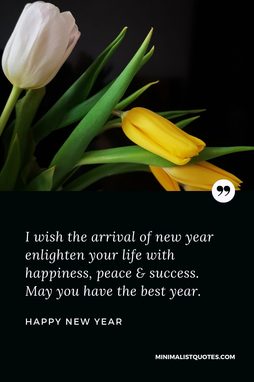 New Year Wish - I wish the arrival of new year enlighten your life with happiness, peace & success. May you have the best year.