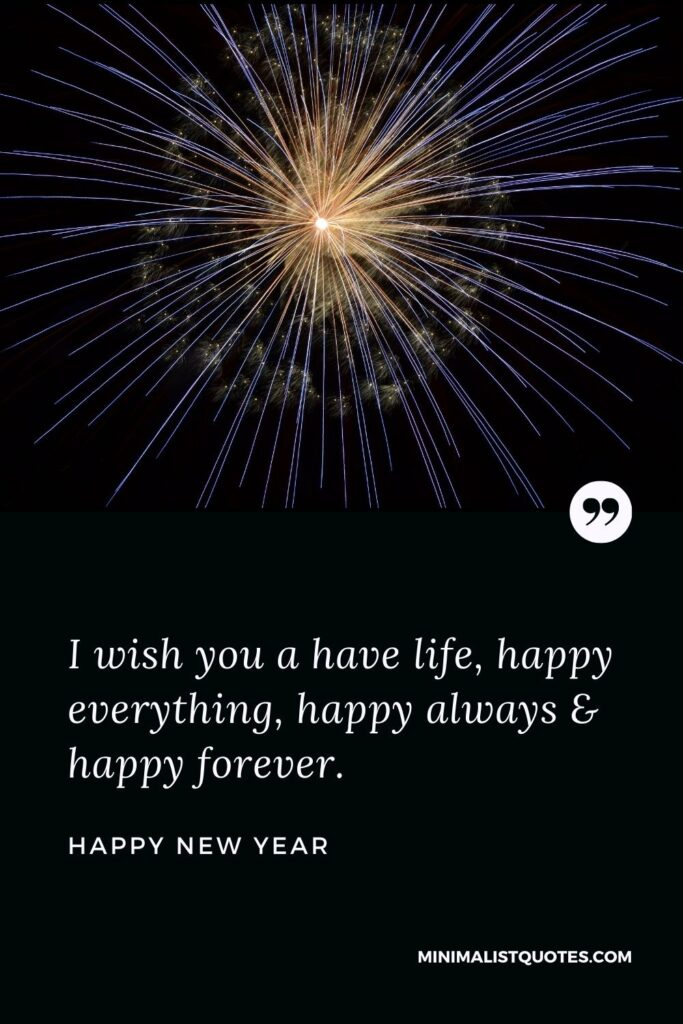 New Year Wish - I wish you a have life, happy everything, happy always & happy forever.