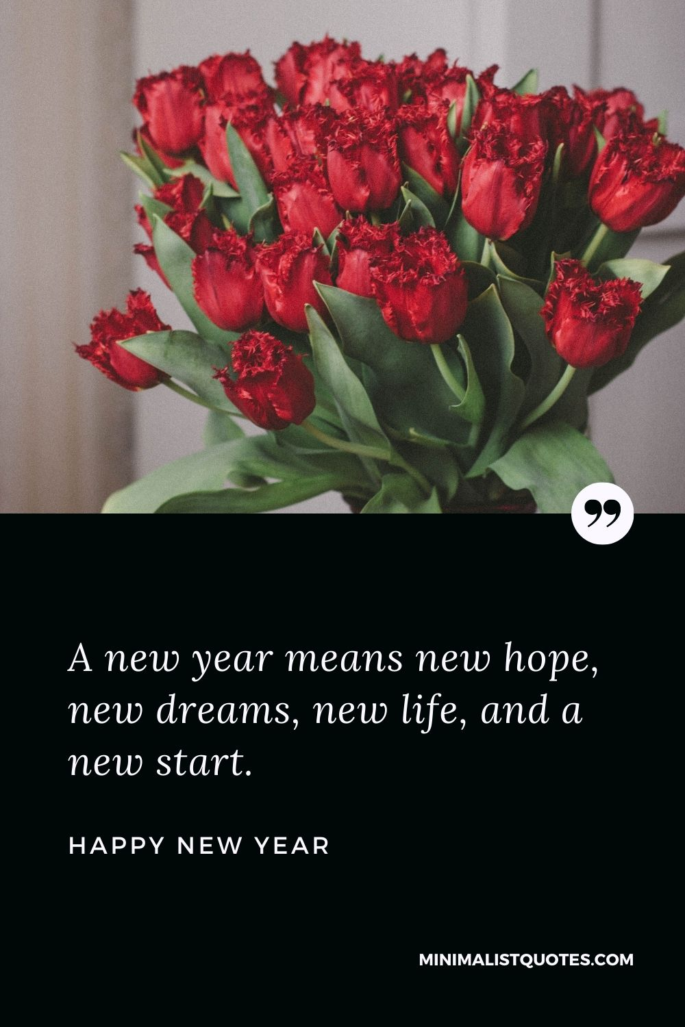 New Year Wish - A new year means new hope, new dreams, new life, and a new start.