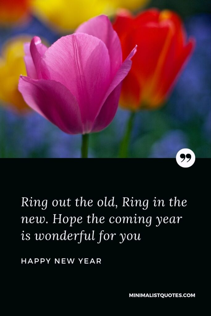 New Year Wish - Ring out the old, Ring in the new. Hope the coming year is wonderful for you.
