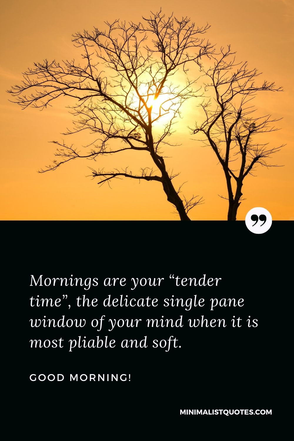 """Good Morning Wish & Message With HD Images: Mornings are your """"tender time"""", the delicate single pane window of your mind when it is most pliable and soft. Good Morning!"""