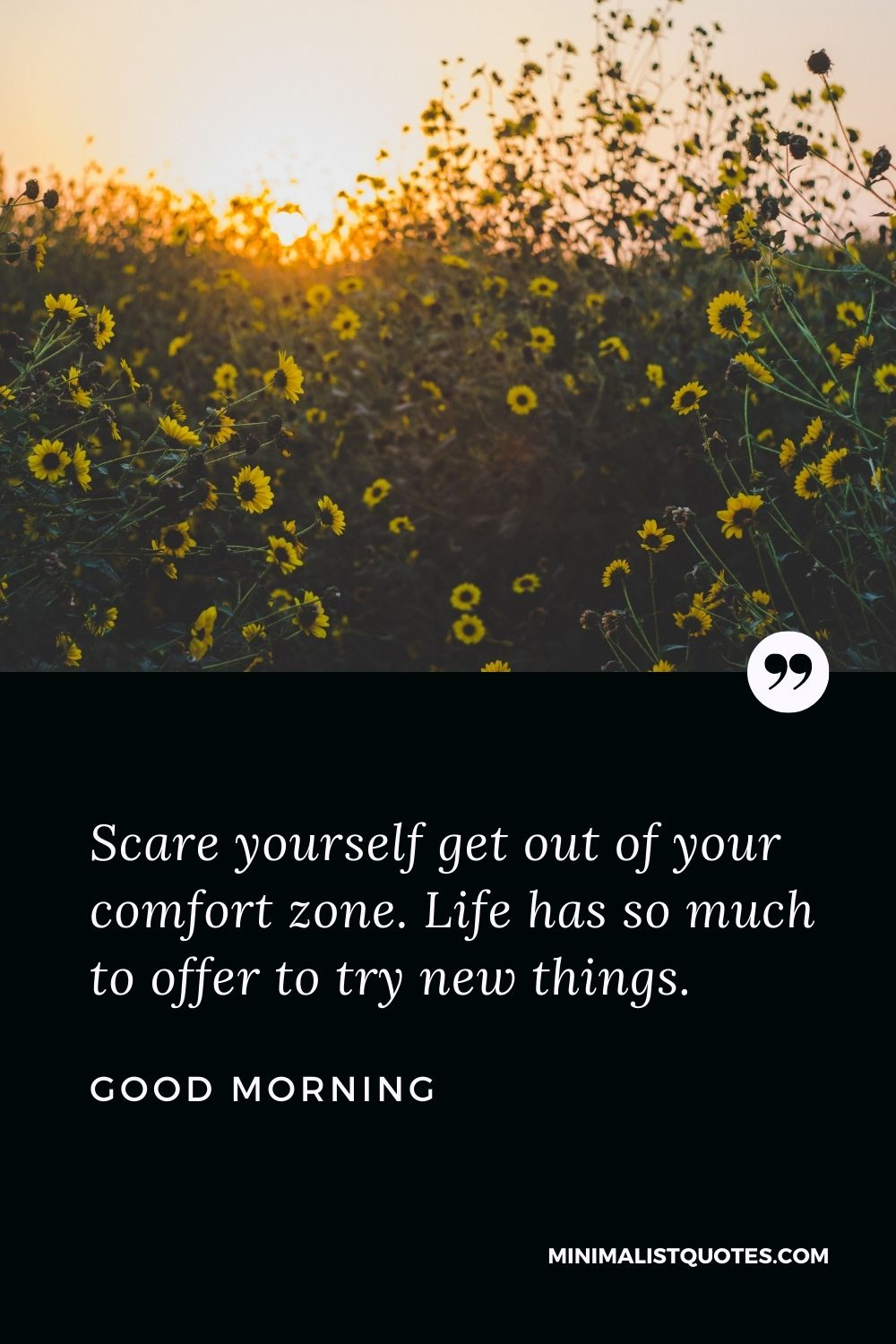 Good Morning Wish & Message: Scare yourself get out of your comfort zone. Life has so much to offer to try new things.