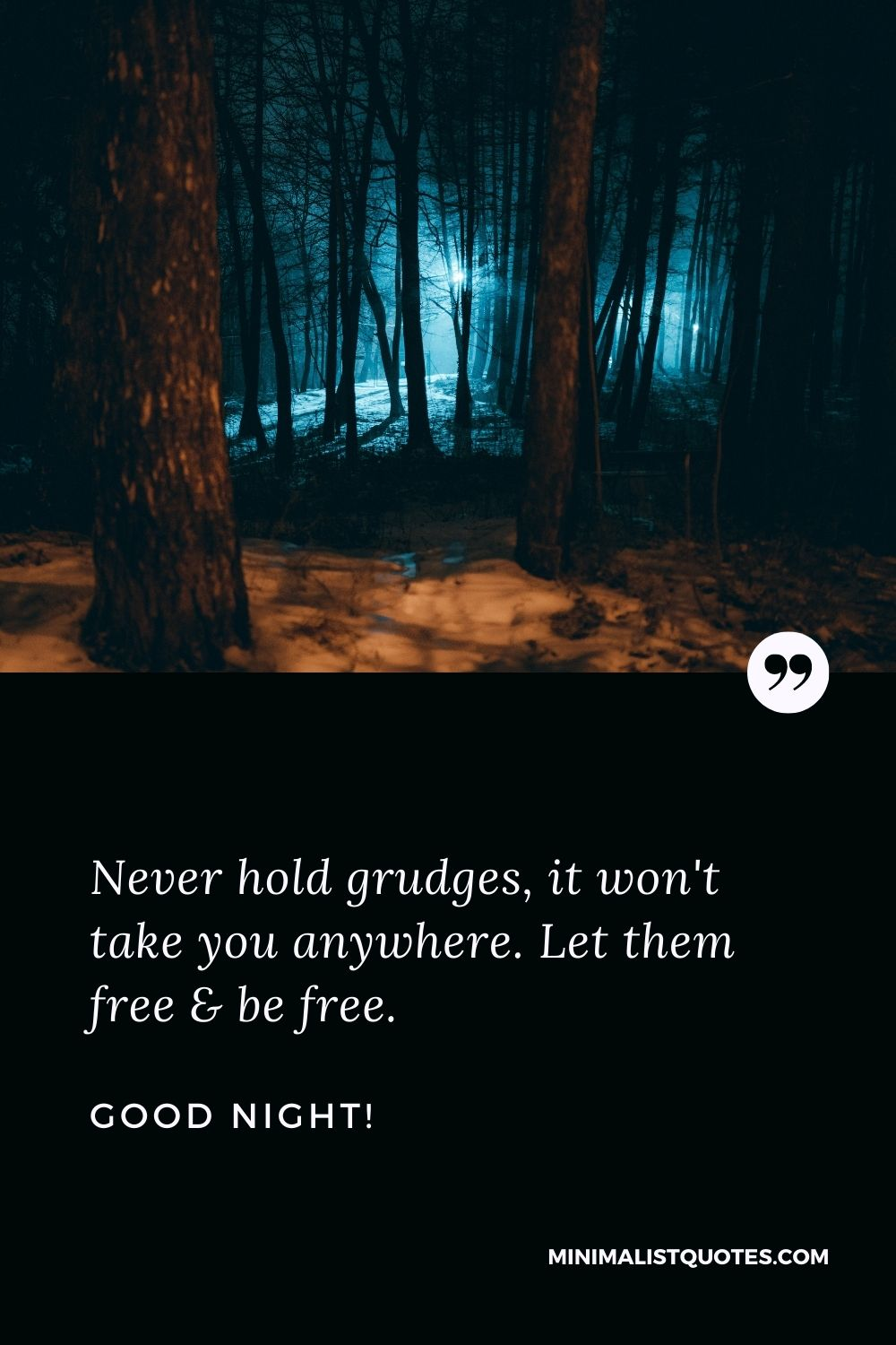 Good Night Wish & Message With HD Image: Never hold grudges, it won't take you anywhere. Let them free & be free. Good Night!