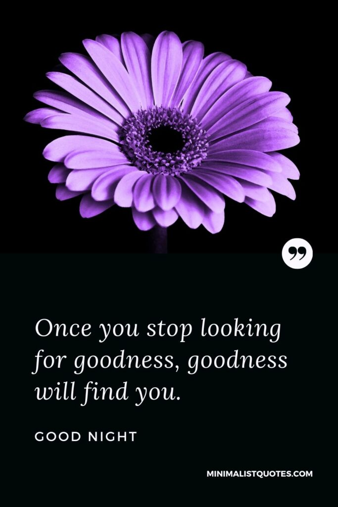 Good Night Wish & Message With Image: Once you stop looking for goodness, goodness will find you.