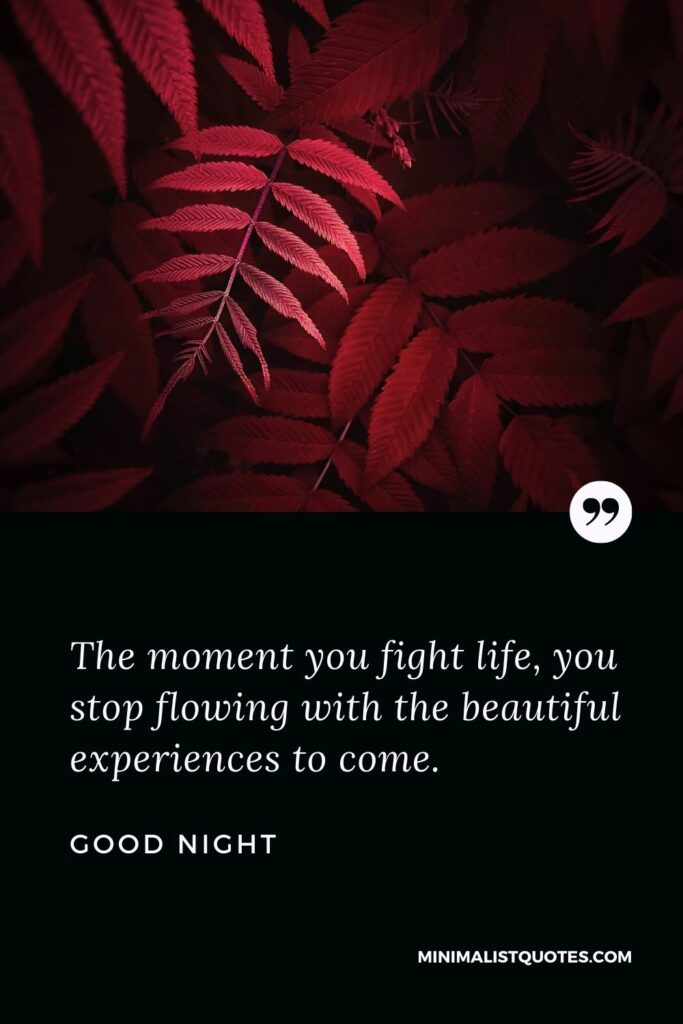 Good Night Wish & Message With Image: The moment you fight life, you stop flowing with the beautiful experiences to come.