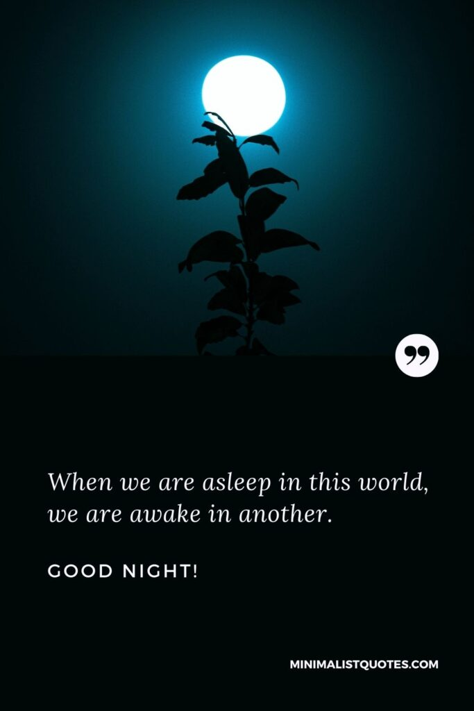 Good Night Wish & Message With HD Image: When we are asleep in this world, we are awake in another.