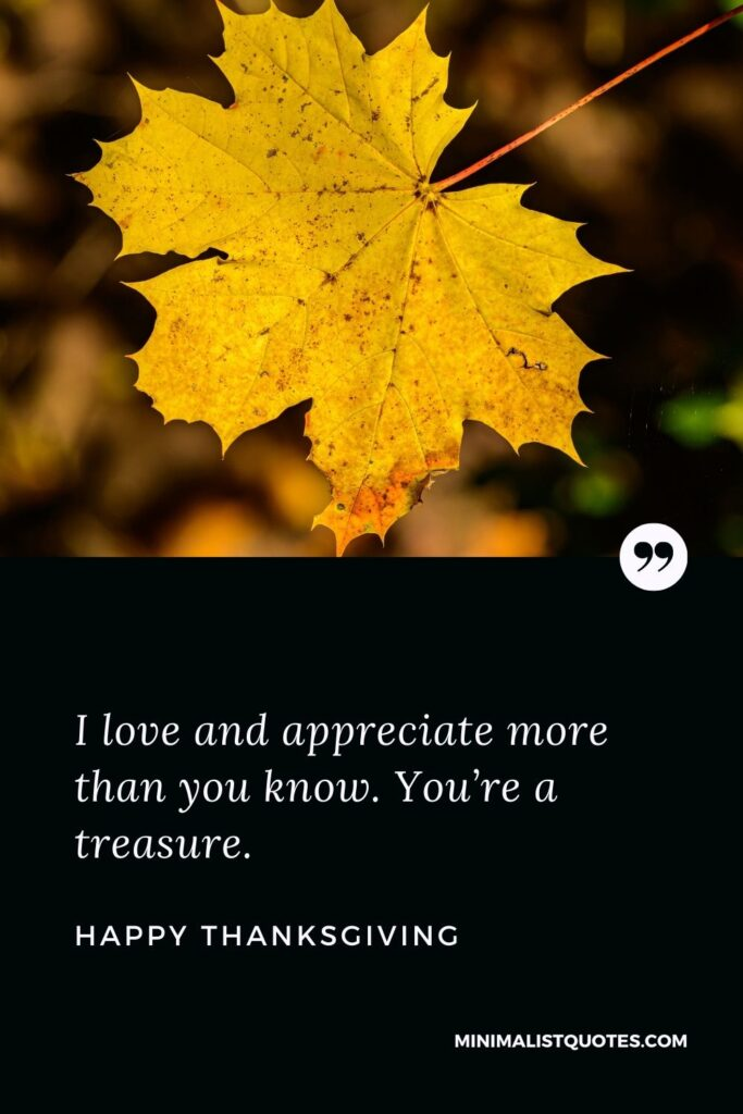 Thanksgiving wish, message & quote with image: I love and appreciate more than you know. You're a treasure. Happy Thanksgiving!