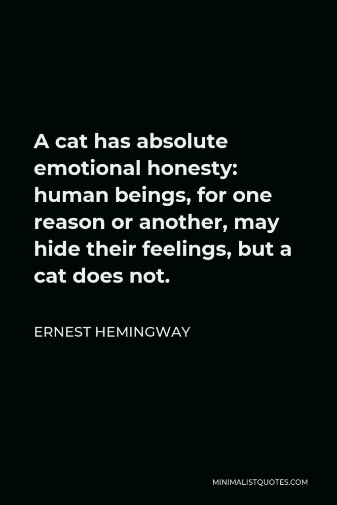 Ernest Hemingway Quote - A cat has absolute emotional honesty: human beings, for one reason or another, may hide their feelings, but a cat does not.