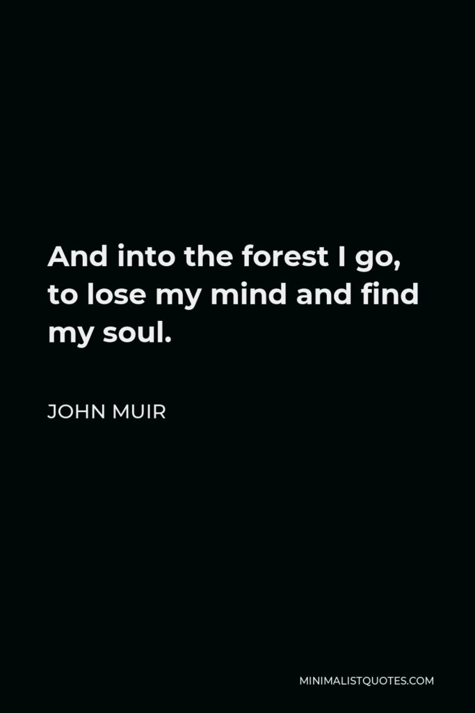 John Muir Quote - And into the forest I go, to lose my mind and find my soul.