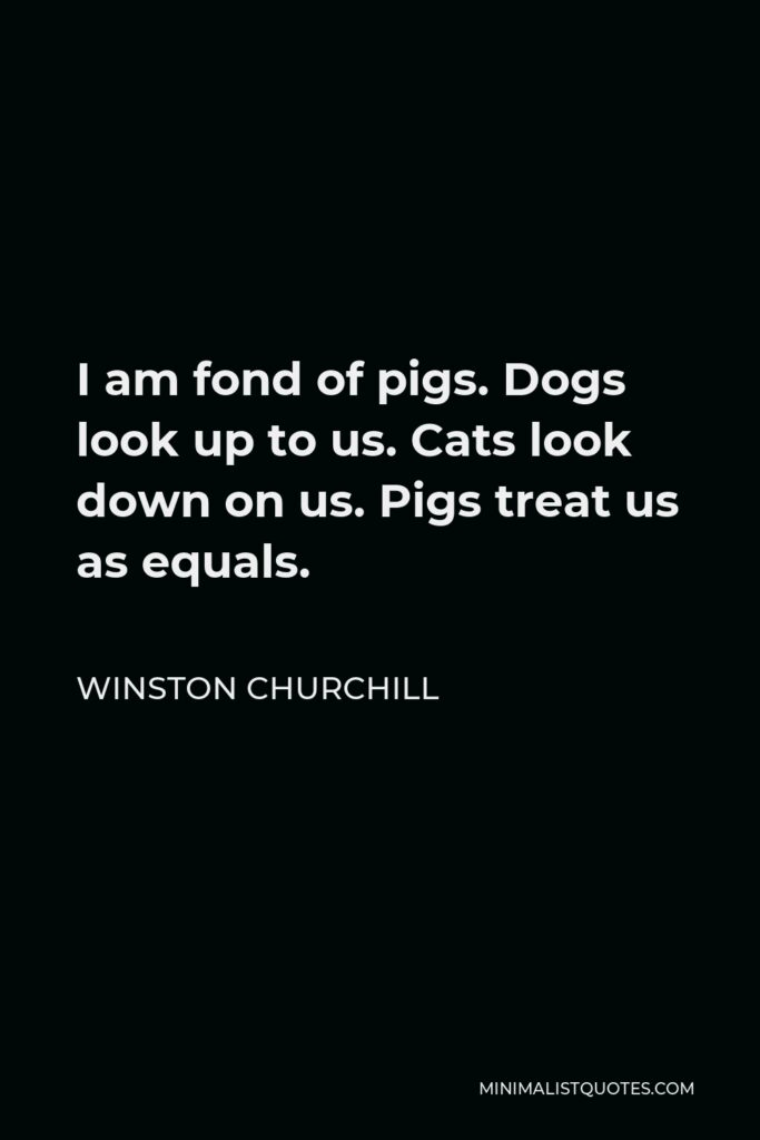 Winston Churchill Quote - I am fond of pigs. Dogs look up to us. Cats look down on us. Pigs treat us as equals.