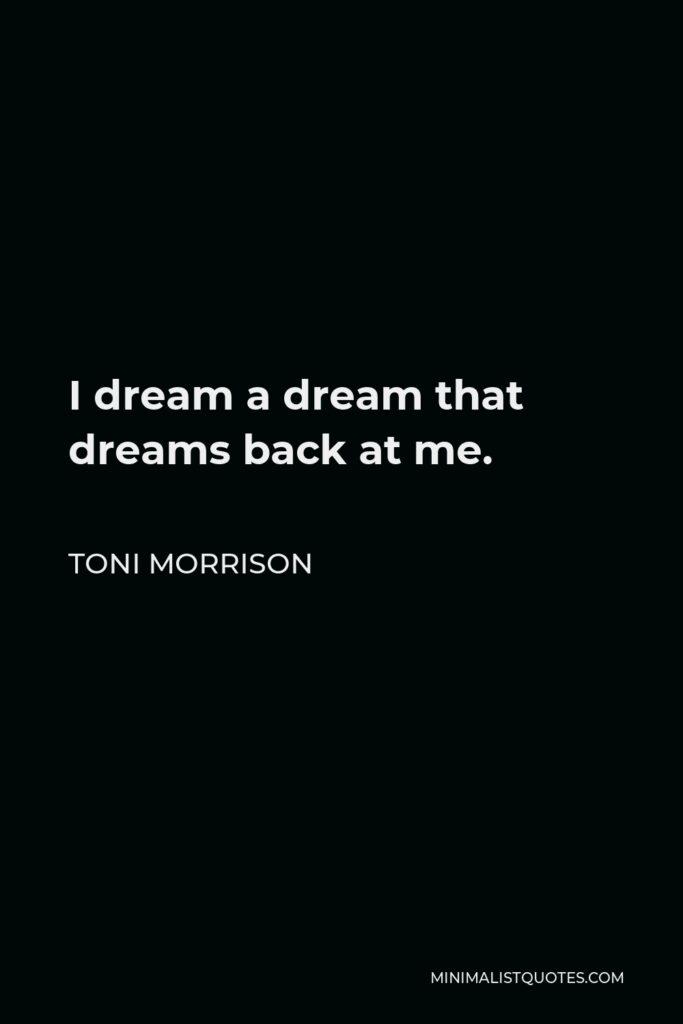 Toni Morrison Quote - I dream a dream that dreams back at me.
