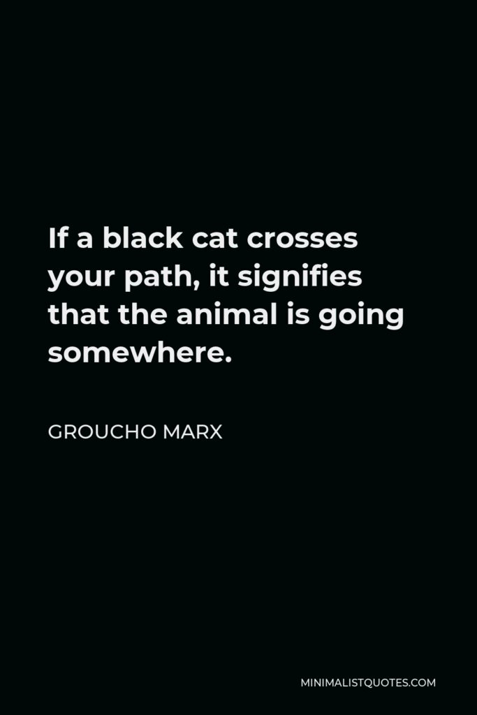 Groucho Marx Quote - If a black cat crosses your path, it signifies that the animal is going somewhere.