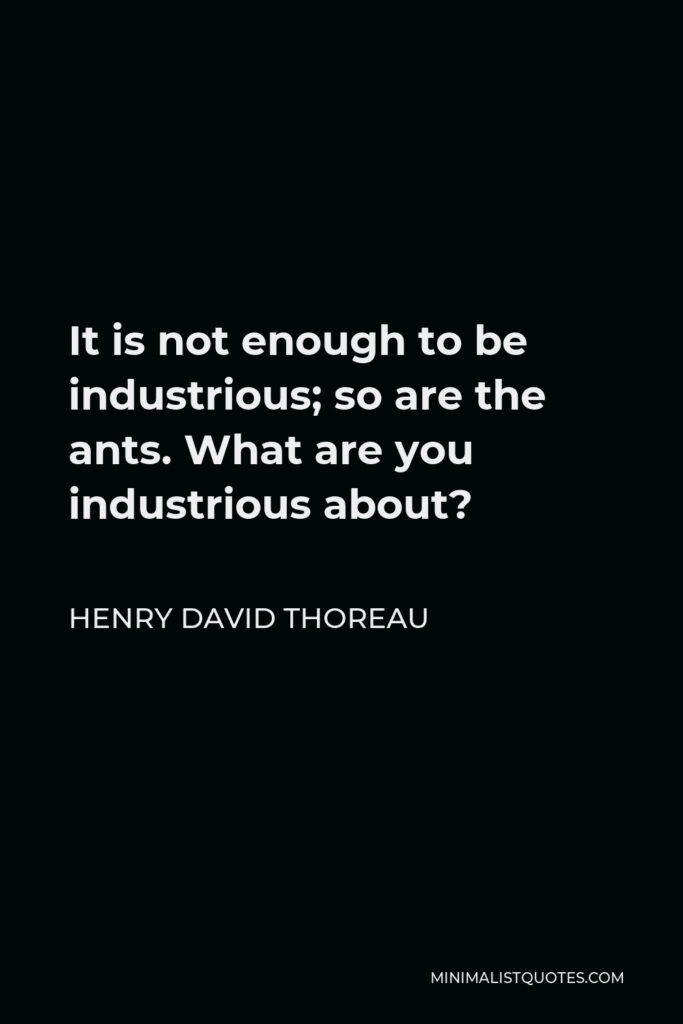 Henry David Thoreau Quote - It is not enough to be industrious; so are the ants. What are you industrious about?