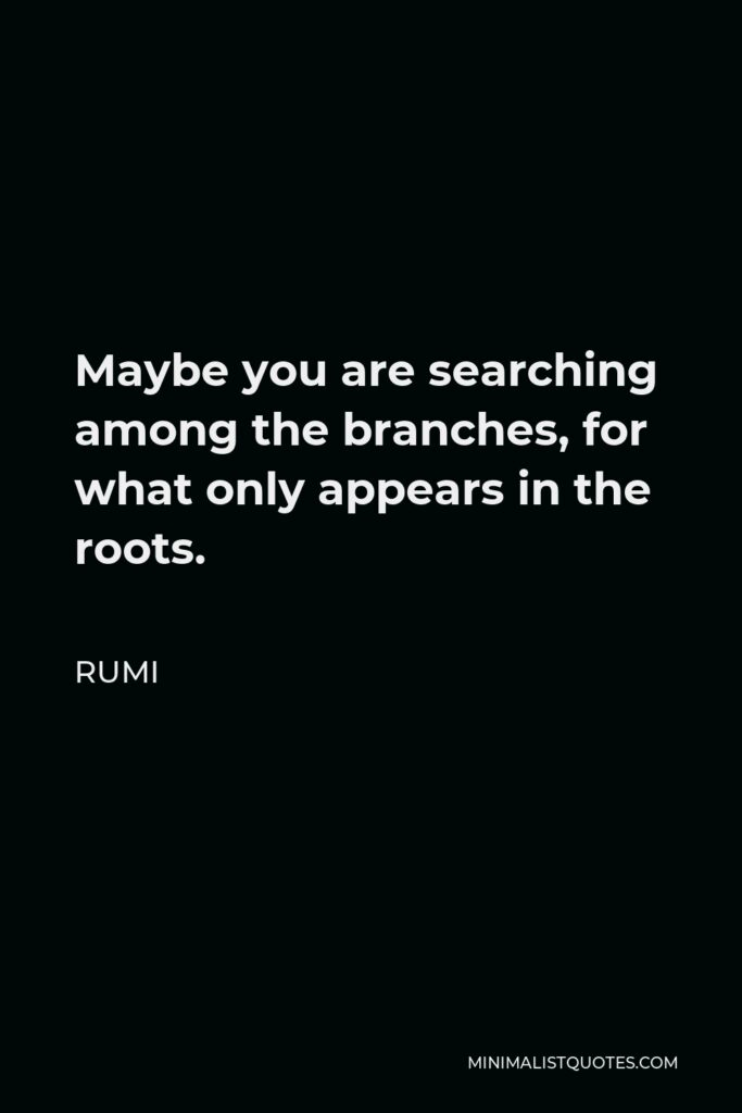 Rumi Quote - Maybe you are searching among the branches, for what only appears in the roots.